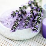 Začinske i aromatične biljke