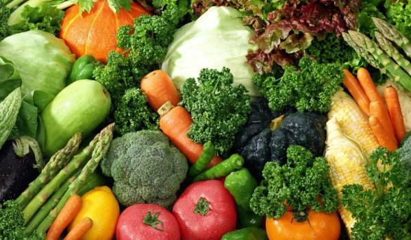 povrce-u-ishrani