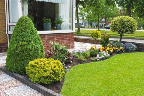 Kako dizajnirati vrt rasadnik mihalek for Garden design za