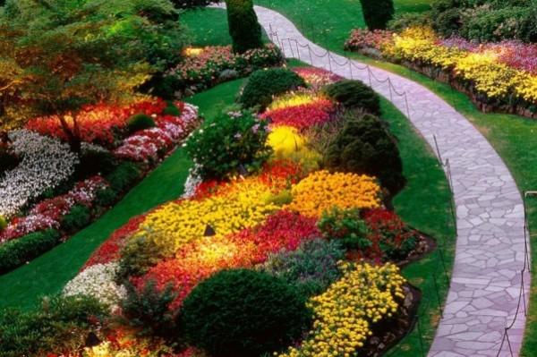 boje u vrtu1