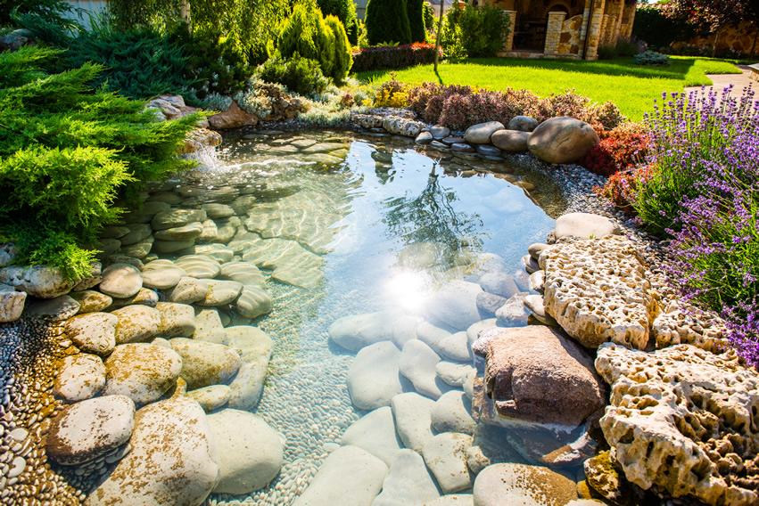 plitko jezerce u vrtu