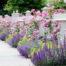 hortikultura, uredjenje vrta