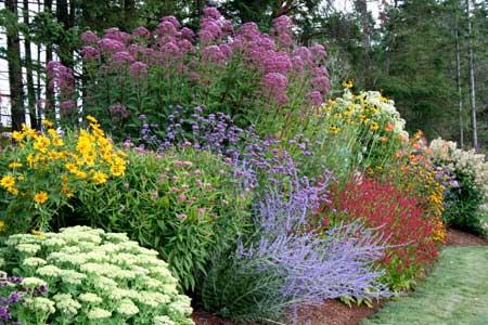 kombinacijja perena - uredjenje vrta