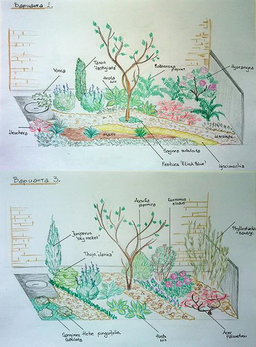 projektovanje-vrtova3