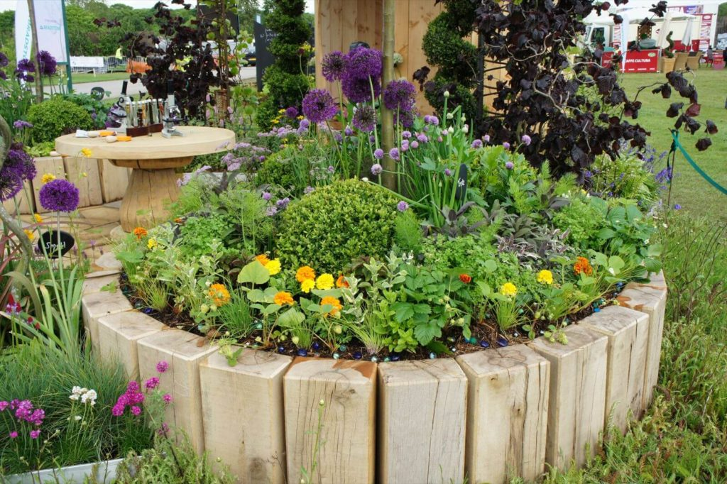 aromaticne biljke ideje2