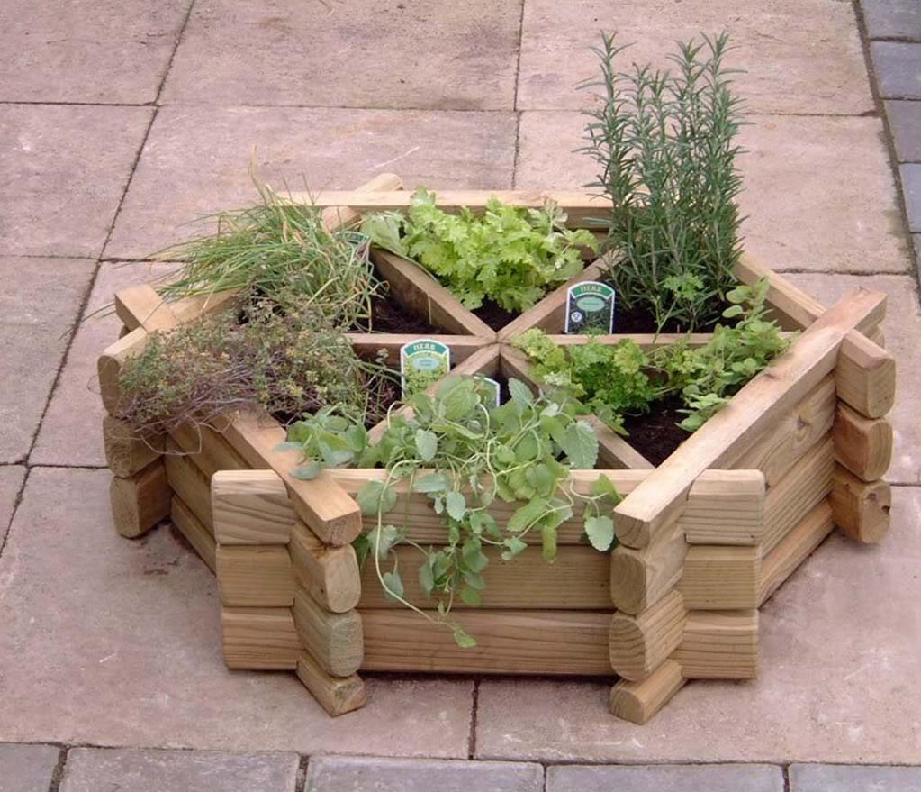 aromaticne biljke ideje4