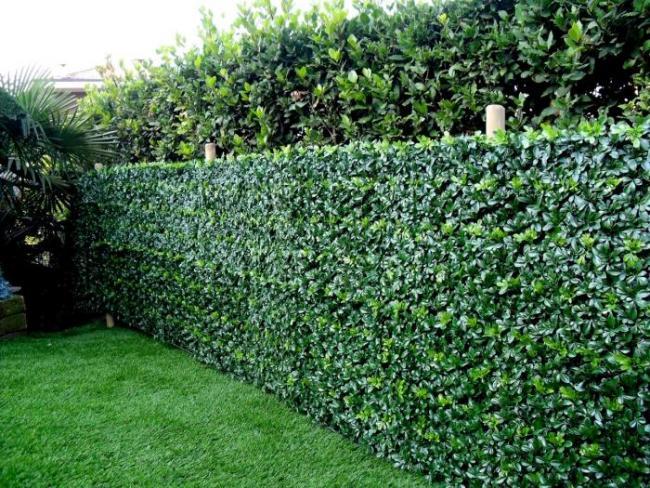 brsljani ograda