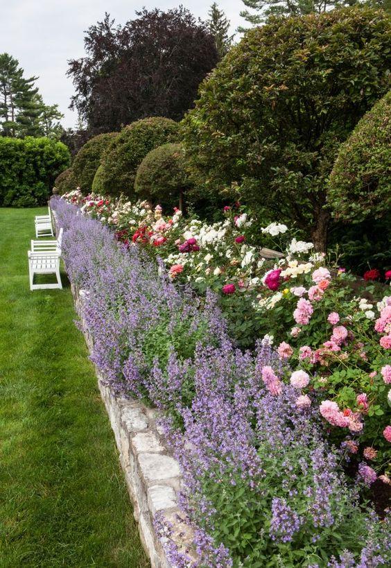 ruže-mnogocvetnice-ideja2